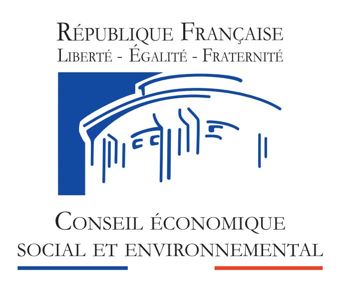 Logo du Conseil Economique Social et Environnemental (CESE)